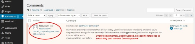 Spam comments
